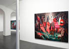 "Rosson Crow, Paris / Texas, Galerie Nathalie Obadia, Paris""  November- January 2009"